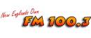 FM1003Logo