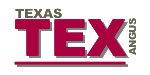 TexasAngus